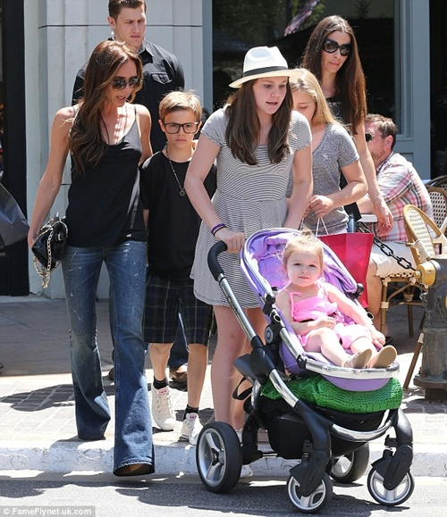 Harper Beckham Pink Dress for Shopping